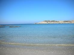 חוף הים נחשולים