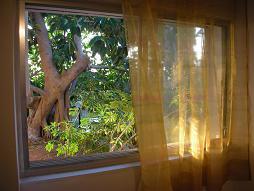 חלון חדרי וילון